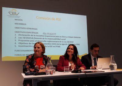 Constitución Comisión RSE CEV