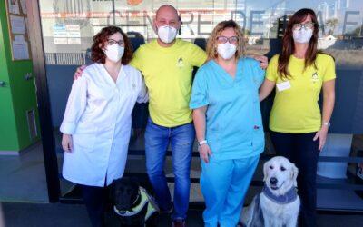 Fundación Acavall y AFAV emprenden un programa de terapia asistida con perros orientado a personas con alzhéimer con el apoyo del CE/R+S